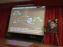 Презентация лекции
